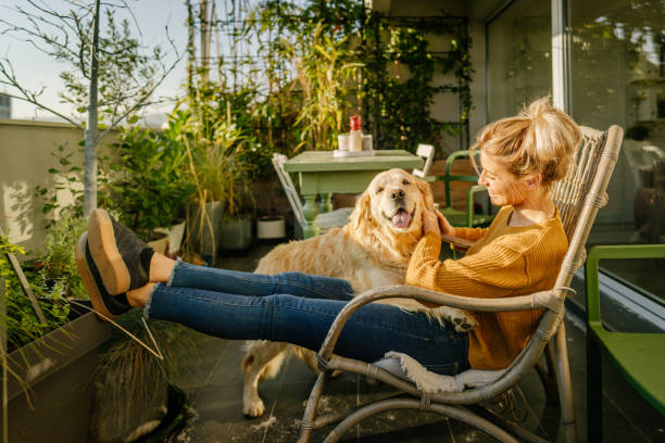Pet place, a space for animals in residential condominiums