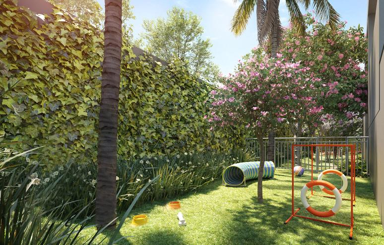 Space for pet, lawn and surrounded by vegetation, with tunnel and jumping equipment.