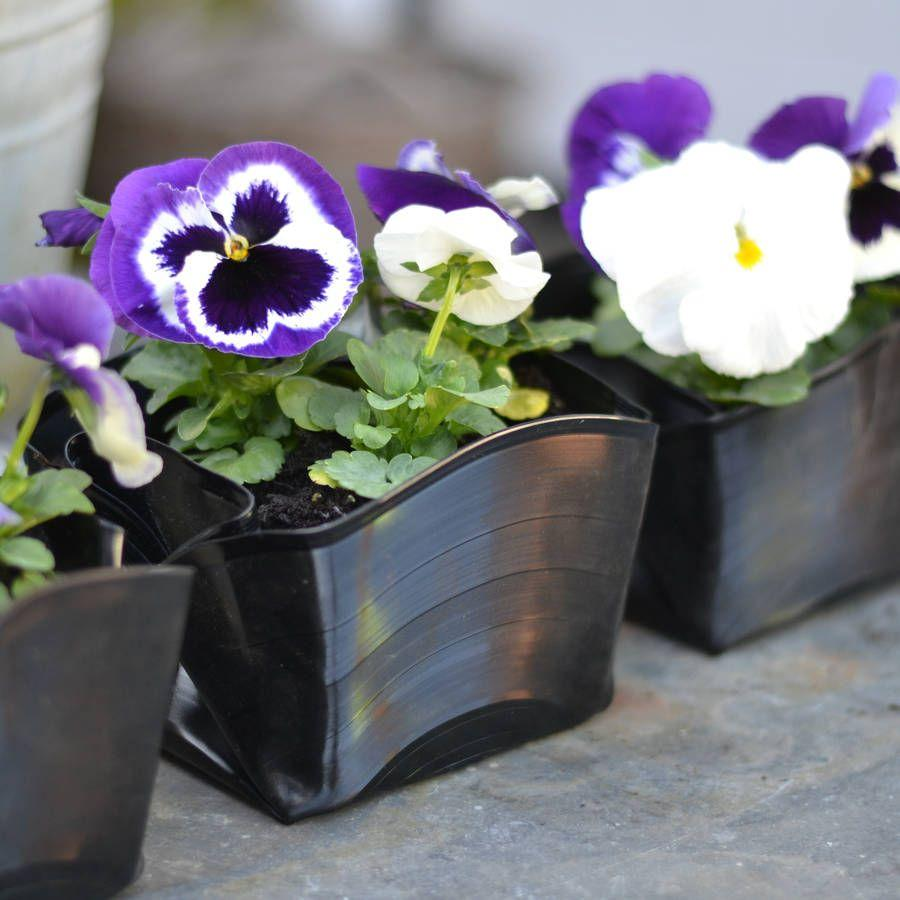 Vinyl records used as flower pots.